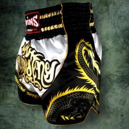 twins-special-muay-thai-shorts-dragon-[2]-61-p.jpg