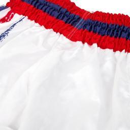 venum-bangkok-spirit-shorts-white-[5]-118-p.jpg
