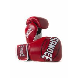 gloves31_1.jpg