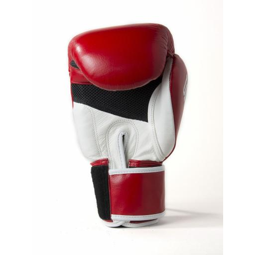 gloves30.jpg